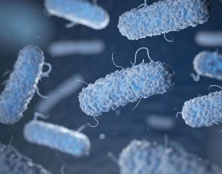Mikobakteriologija